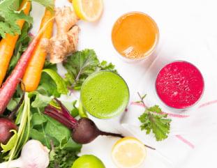 diferença entre técnico em nutrição e gastrônomo
